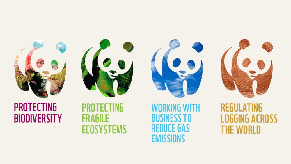 ASHA branding WWF